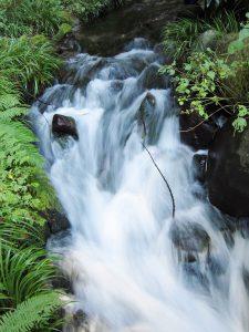 安心・安全な100%天然水 箱島天然湧水